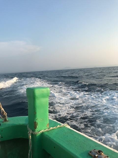鳥取 白 イカ 釣り